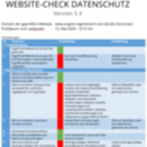 Website-Check vorher